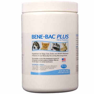 Bene-Bac Plus proszek 454g