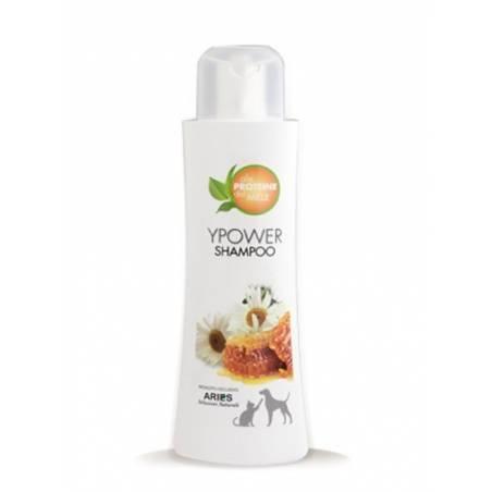 Aries Ypower Shampoo 250ml