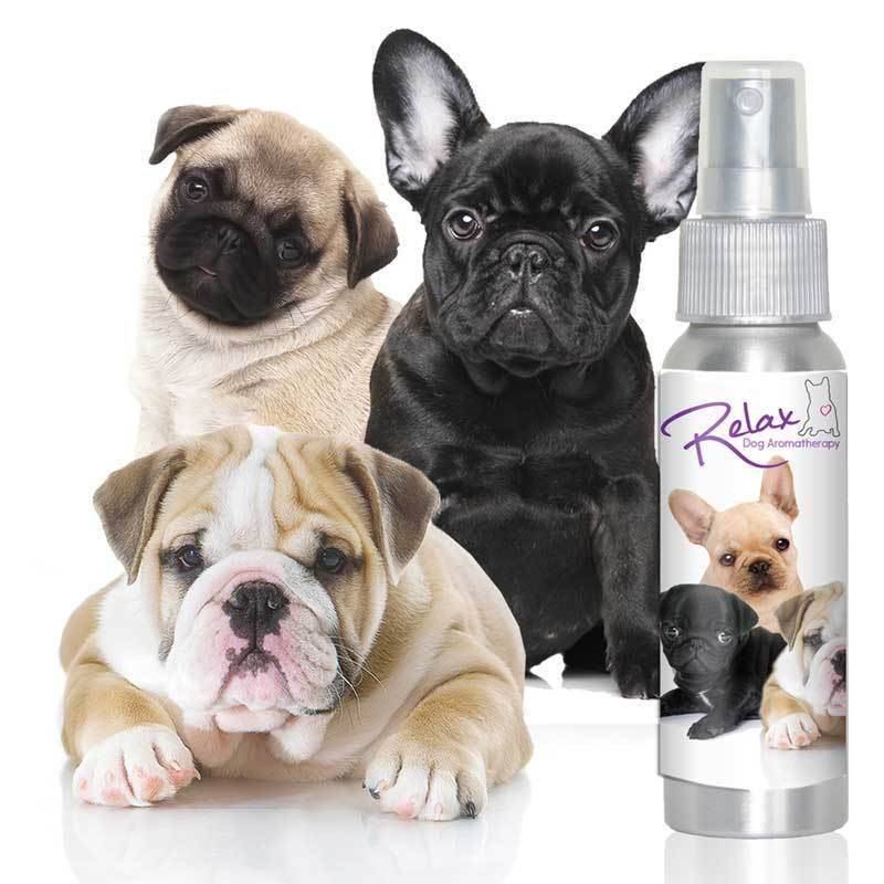 Relax Dog Aromaterapia (spray)