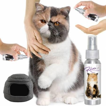 Relax Cat Aromaterapia (spray)